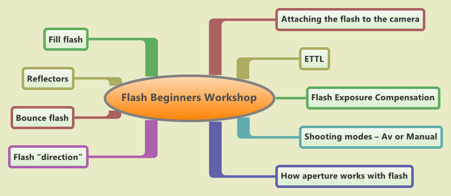 Flash Beginners Workshop